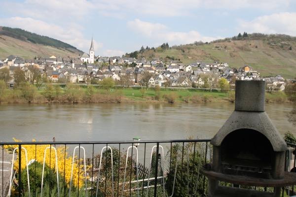 Uitzicht vakantiehuis zur Mosel in Kövenig